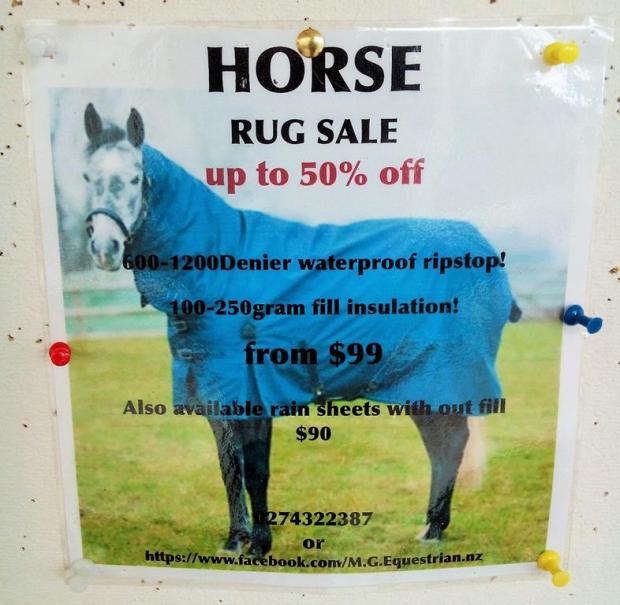 horse rug sale