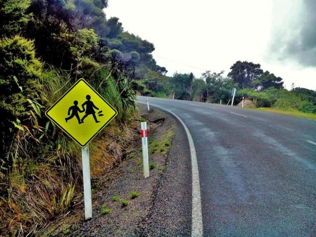 Many things cross the roads in NZ - kiwis, ducks, cows, sheep, drunk kiwis and barefoot children.